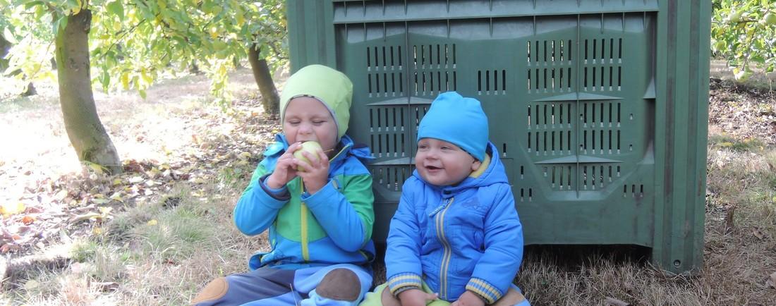 Den s Hami aneb cesta jablíčka až do Hami jablečných přesnídávek 10.10.2016